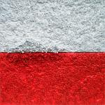 Fragment 349 - wojna polsko-polska